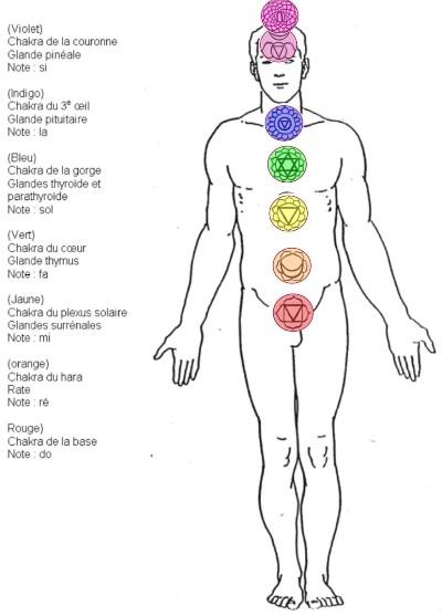 chakra-positions
