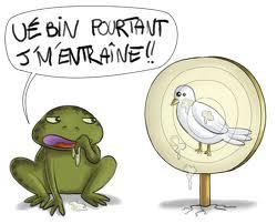 bave crapeau-colombe2