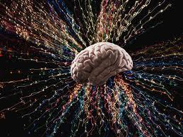 esprit-cerveau
