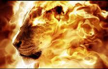 Lion en flamme